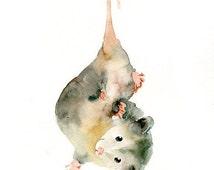 OPOSSUM 5x7 Print-Art Print-animal Watercolor Print-Giclee Print--Children's Wall Art