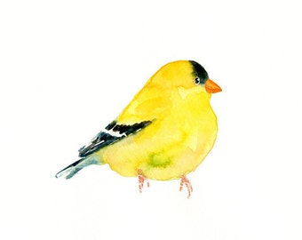 GOLDFINCH-7X5 print-Art Print-Bird Watercolor Print-Giclee Print-