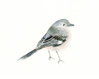 MOCKING BIRD-7x5inch Print-Kid's Wall Art -Nursery decor- Playroom Decor-Nursery wall art-bird art