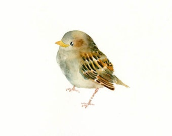 BABY SPARROW-10x8inch print-Art Print-Bird Watercolor Print-Giclee Print-