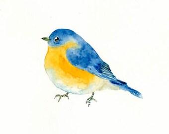 BLUEBIRD by DIMDImini 7x5inch Print