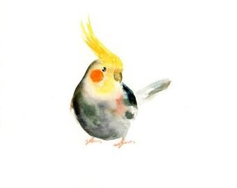 COCKATIEL 10x8inch print-Art Print-Bird Watercolor Print-Giclee Print-