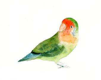 LOVEBIRD - 7x5inch -Art Print-Bird Watercolor Print-Giclee Print-parrot print