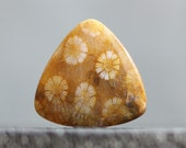 Ocean Fossils: Translucent Stone Cabochon, Agatized Coral Bead, Beads for Jewelry Designing, 39mm (CA368)