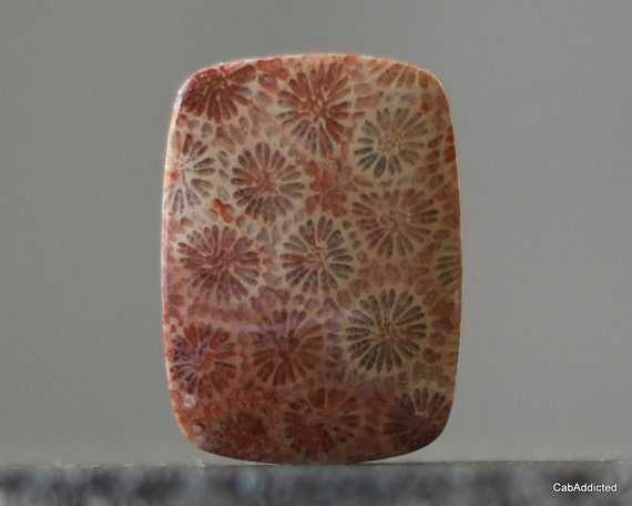 Sea Cabochon - Rustic Rose, Table Stone Natural Agatized Coral Cabochon, OOAK, AAA Quality, 40mm (CA195)