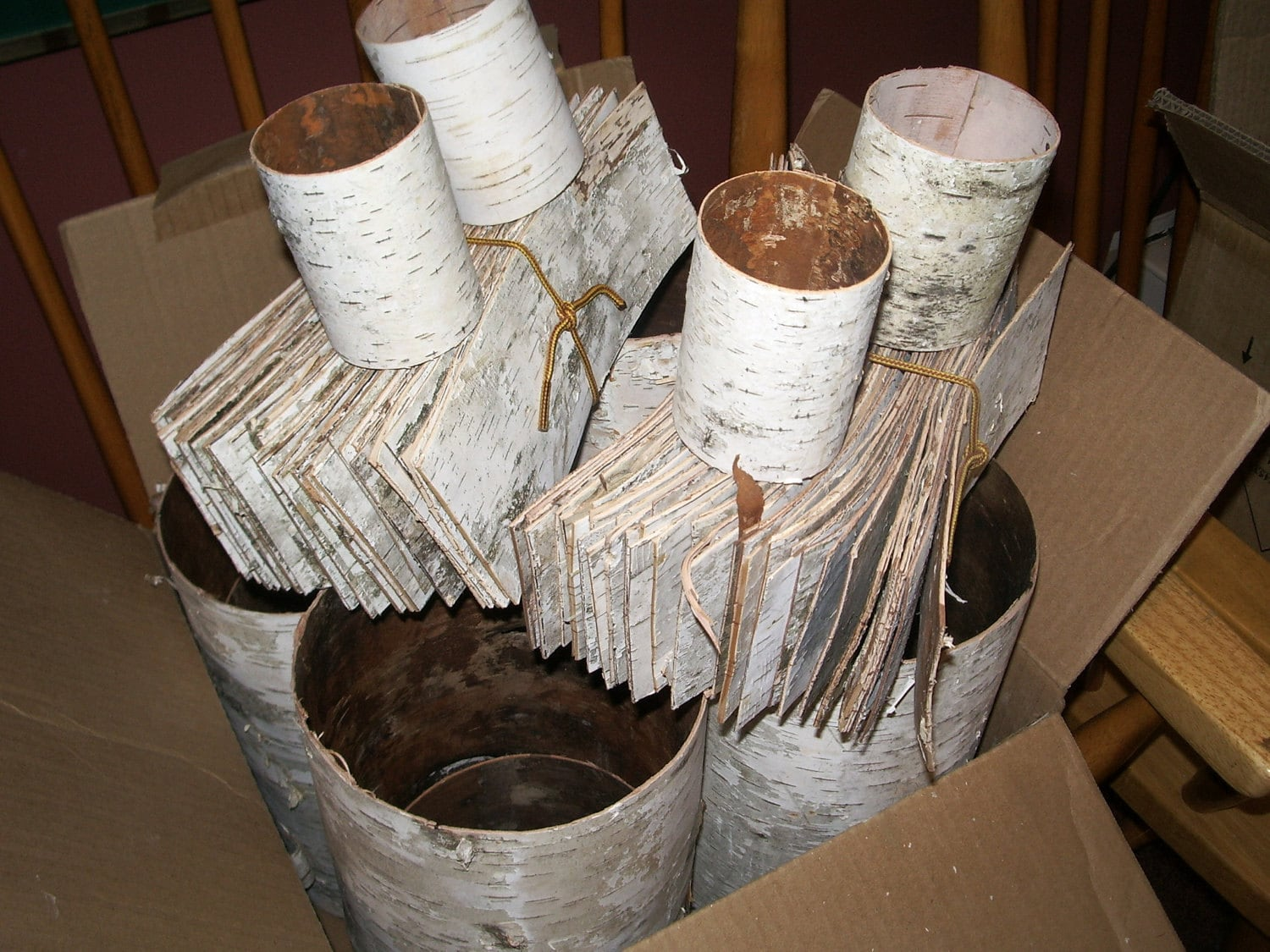 10 Birch Bark Sheets Tubes Crafts Decorations Rustic Natural