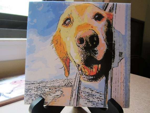 Golden retriever  Tile Photo