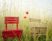 Nature Photograph, fine art photo print, two chairs, poppy, red, harvest, landscape, home decor wall art, cottage decor, 6x9