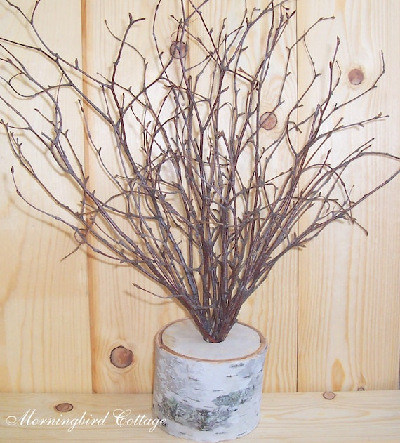 Birch and Branches Wedding Centerpiece - Wish Tree, Wishing Tree, Wedding Tree, Shabby Chic Wedding, Rustic Wedding, Woodland Wedding