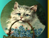 1 1/2 Fabric Cat Button - FORGET ME NOTs with Love in my Vintage Wee Kitty Basket Ready to Ship