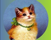 1 1/2 Fabric Cat Button - Baby Blue Bell So Sweet Mothers Day Kitten