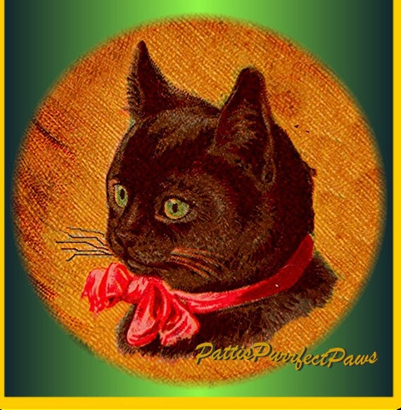 1 1/2 Fabric Cat Button - BLACK CAT Full Moon - Midnight Black Friday Cyber Monday