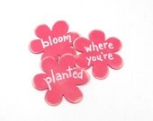 Shabby chic magnets. Bloom where you're Planted.