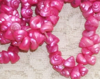 HOT PINK SHELLS 1950s Vintage real shell Beads 5-6mm (50)
