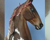 The Art of Mixed Media: Chestnut Tobiano - Instructional DVD - Learn to Paint Model Horses