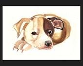 COMMISSION Your PET  portrait 8x10 inch watercolor original