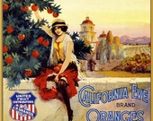 Los Angeles California Eve Orange Citrus Fruit Crate Label Art Print