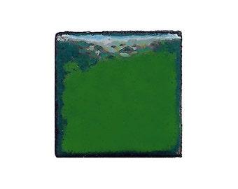 1345 Hunters (Green) Opaque Lead-free Powdered Glass Enamel 1oz.