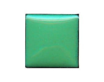 1315 Willow (Green) Opaque Lead-free Powdered Glass Enamel 1oz.