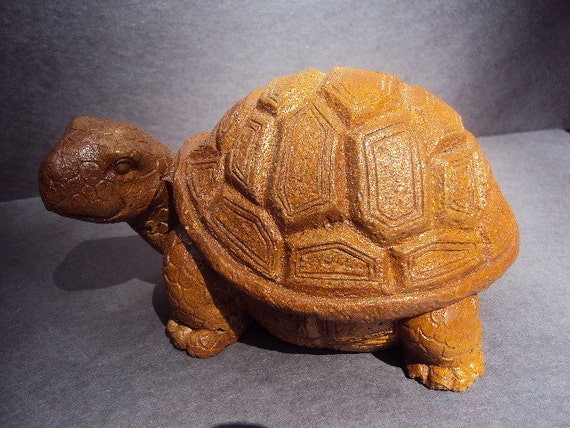 Turtle Stone,  Over Three Pounds