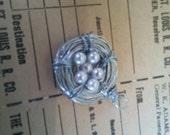 Customer Order 6 eggs in a Nest pendant