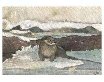 Otter from EcoTarium Card