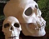"Halloween decoration, realistic Human skull 8"" tall, Renaissanse decoration, Goth skull, Ready to paint, Ceramic bisque, u-paint"