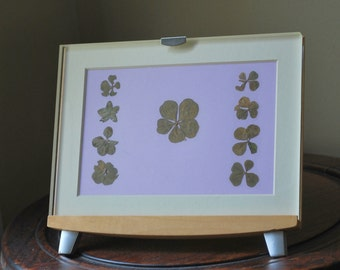 OOAK Pedestal Frame Lucky Real Four Leaf Clovers Surround Perfect Fiver