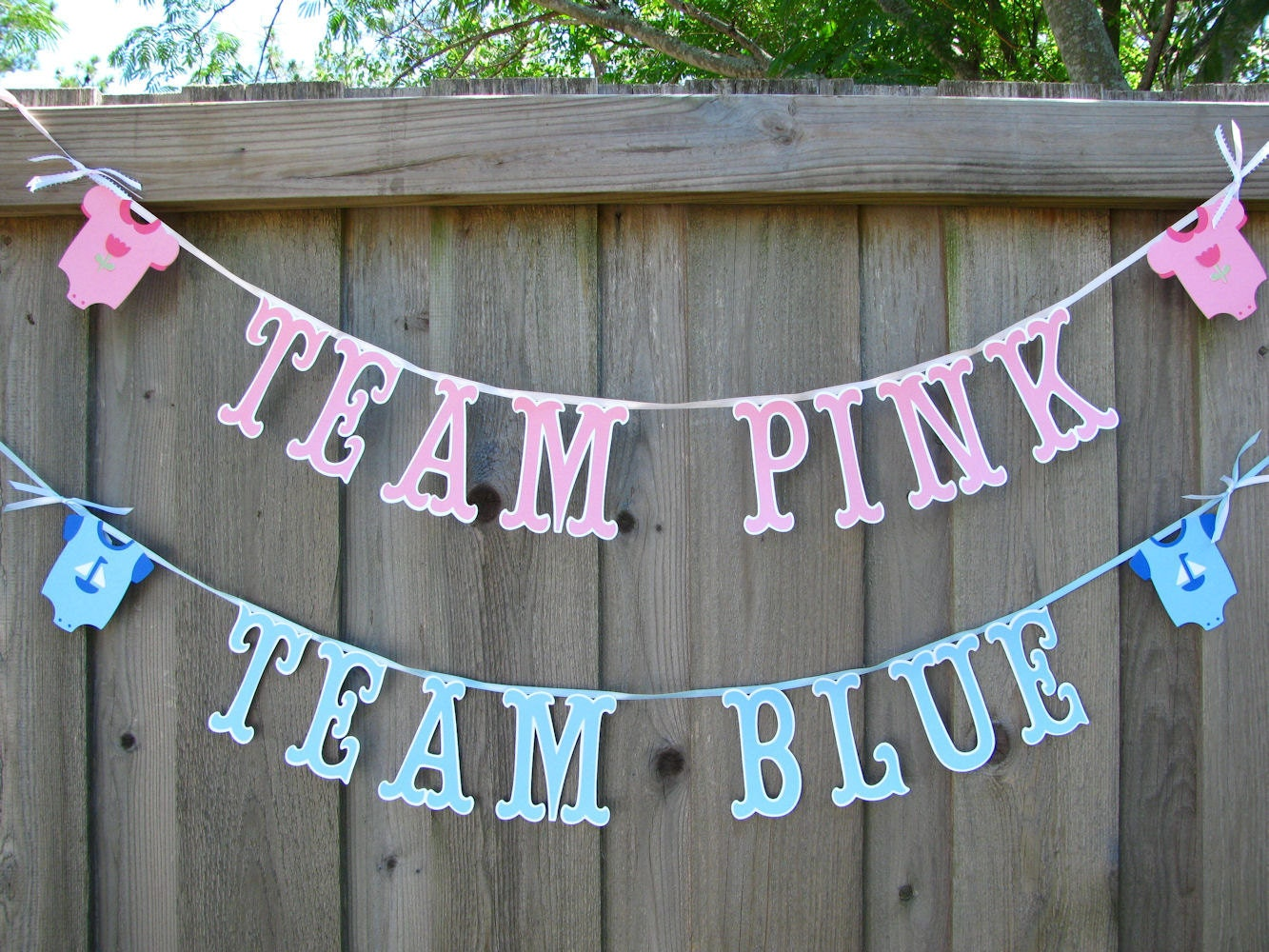 Gender Reveal Party Banner Team Pink Team Blue Banners