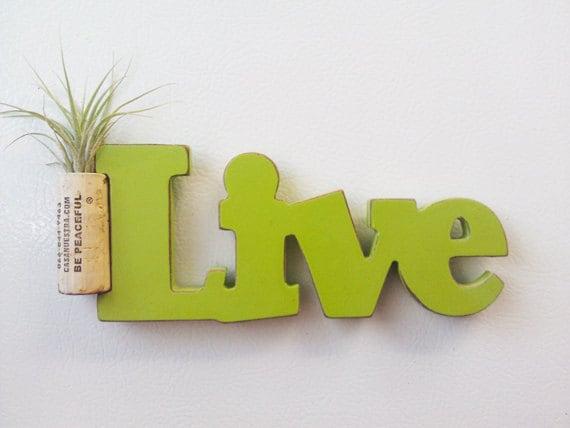 Live Be Peaceful Inspiration magnet garden air plant OOAK natural cork - Tillandsia Kolbii