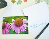 Photo Greeting Card - Purple Coneflower