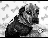 Custom Drawn Pet Portrait from Photo