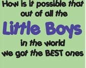 Best Little Boys in the World - Vinyl Decal- perfect for a nursery or boy's room