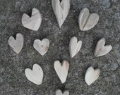11 OOAK Driftwood Hearts Lake Michigan Craft Supply