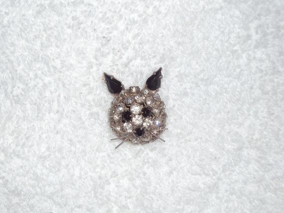 Warner cat pin