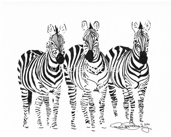 Zebras - Ink Sketch, Ink Drawing, Pen and Ink, Black and White, Fine Art Print, Giclee, Original Art, Animal, Africa