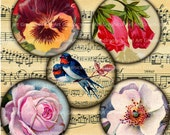 Vintage Flora and Fauna 1.5 Inch Circles Digital Collage Sheet no. 162 for  Magnets,  Scrapbooking