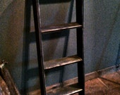Primitive Ladder/ Shelf