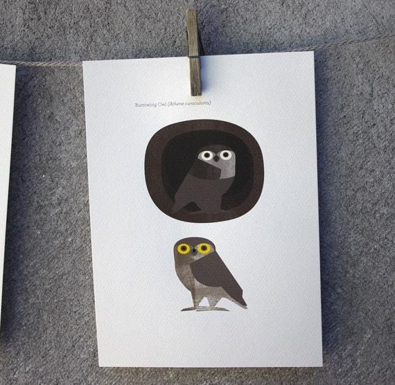 Owl - Original ILLUSTRATED Digital Image Download poster print