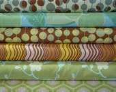 SALE: Amy Butler's Midwest Modern II Collection, One Yard Cuts
