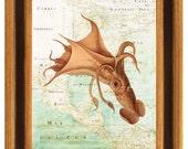 Squid print, Vintage Octopus, Umbrella squid,  old map  East Coast of America, Seaside Wall Art, beach cottage decor, coastal living,   8x10