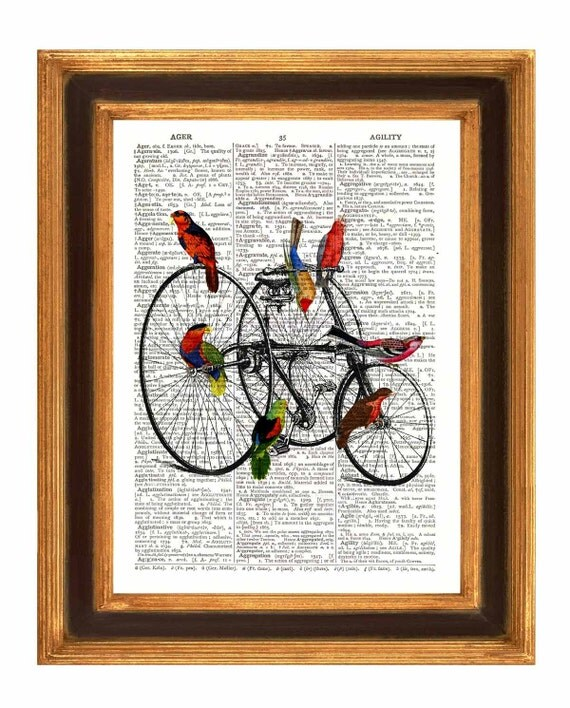 Parrots art, Parrots on penny farthing Print Dictionary old velocipede and parrots illustration,  wall decor Book page Print
