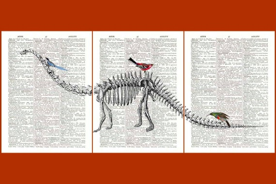 Diplodocus Dinosaur Skeleton triptych Print with birds  vintage illustration on an old  dictionary page, Upcycled Book Print, Set of 3