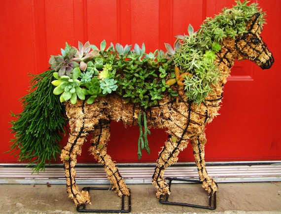 DIY Succulent Horse Topiary Centerpiece HORSE Perfect Gift  Home Garden or Event Decor