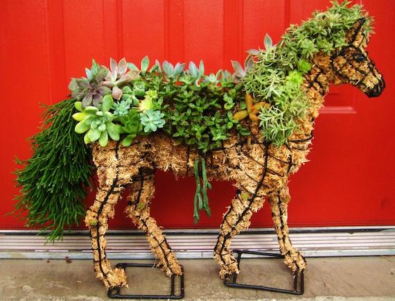 DIY Succulent Horse Topiary Centerpiece HORSE Perfect Gift  Home Garden or Event Decor