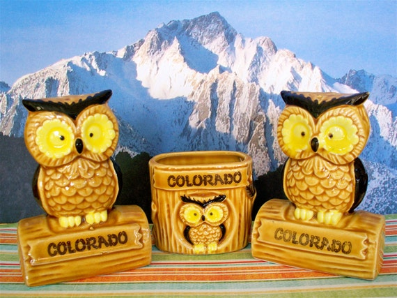 Vintage Kitsch Owl Salt and Pepper Shakers with Tooth Pick Holder Colorado Souvenir Set