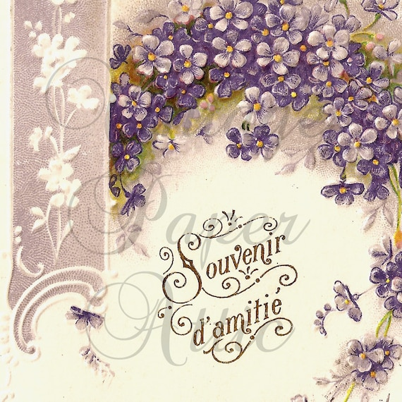 1906 Violets with Pretty Embossed Border Antique French Lithograph Postcard from Vintage Paper Attic
