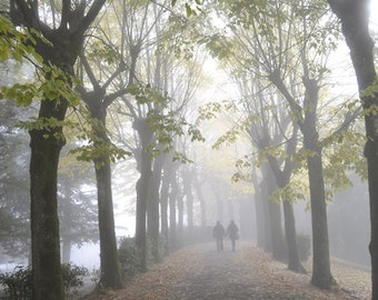 Italy Tuscany love photography, couple in the misty trees, Valentine be mine, 8x10 photo, Italian home decor, Tuscan landscapes