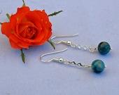 Sky Blue Crazy Lace Agate Dangle Earrings
