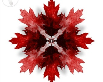 Kaleidoscope Oak Tree Leaf in Red, Giclee Print. Great for Autumn / Fall Seasonal Decorating, Thanksgiving, Halloween.